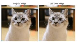 cat_recolored